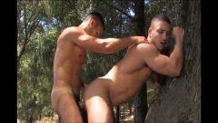 Musculosos fodendo no meio da floresta